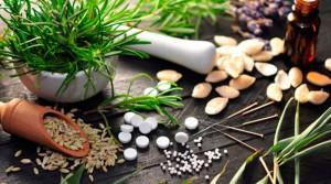 Ervas e plantas medicinais utilizados na fitoterapia para curar doenças